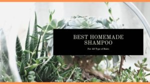 Best Homemade Herbal Shampoo for All Type of Hair